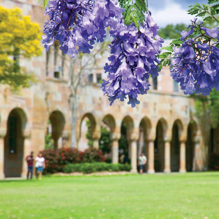 UQ Infographic Design Folio Header Image